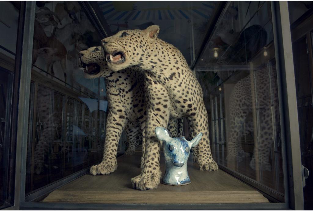 Tête de faon, 2004